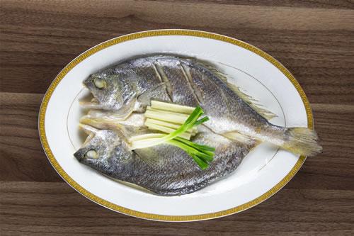 脱脂鲜卤大黄鱼