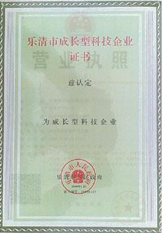 乐清市成长型科技企业证书