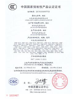 ZSQ5-100 001