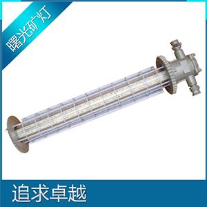 長型巷道燈DGS-30/127L